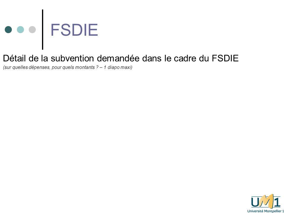 FSDIE Détail de la subvention demandée dans le cadre du FSDIE