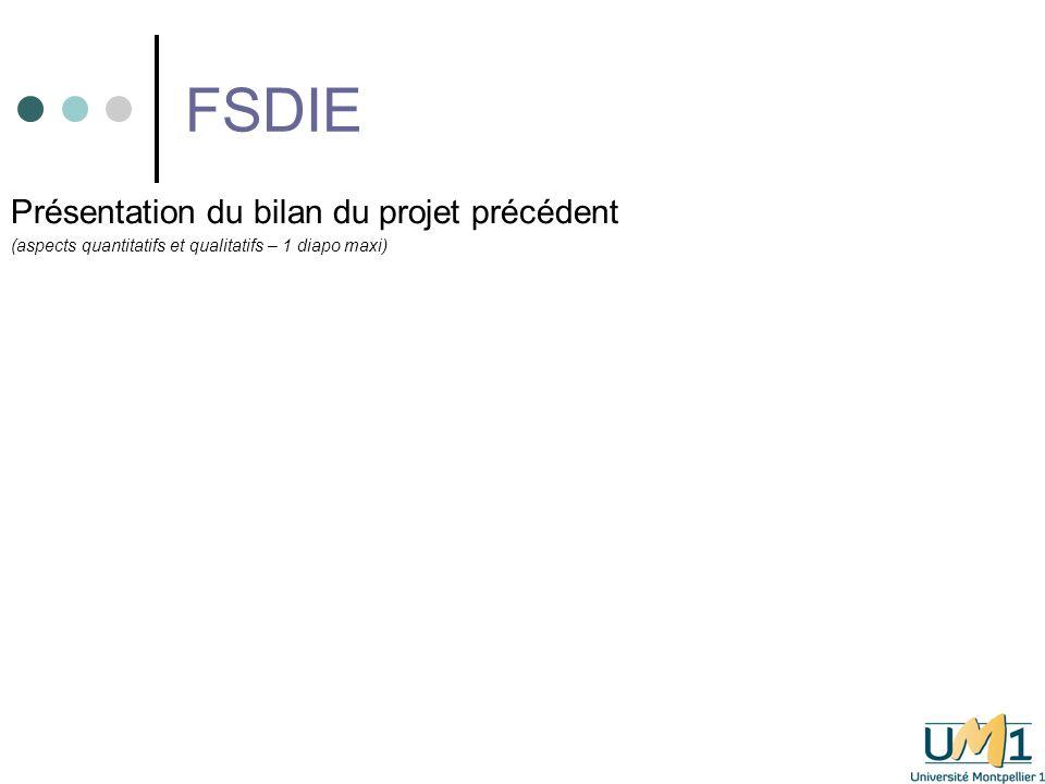 FSDIE Présentation du bilan du projet précédent