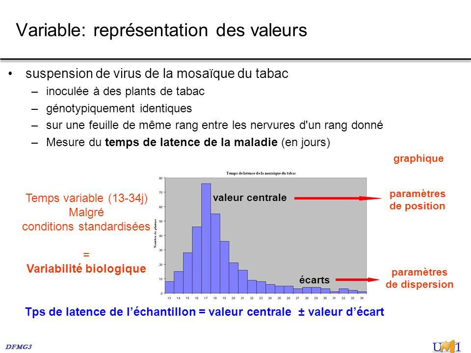 Variable: représentation des valeurs