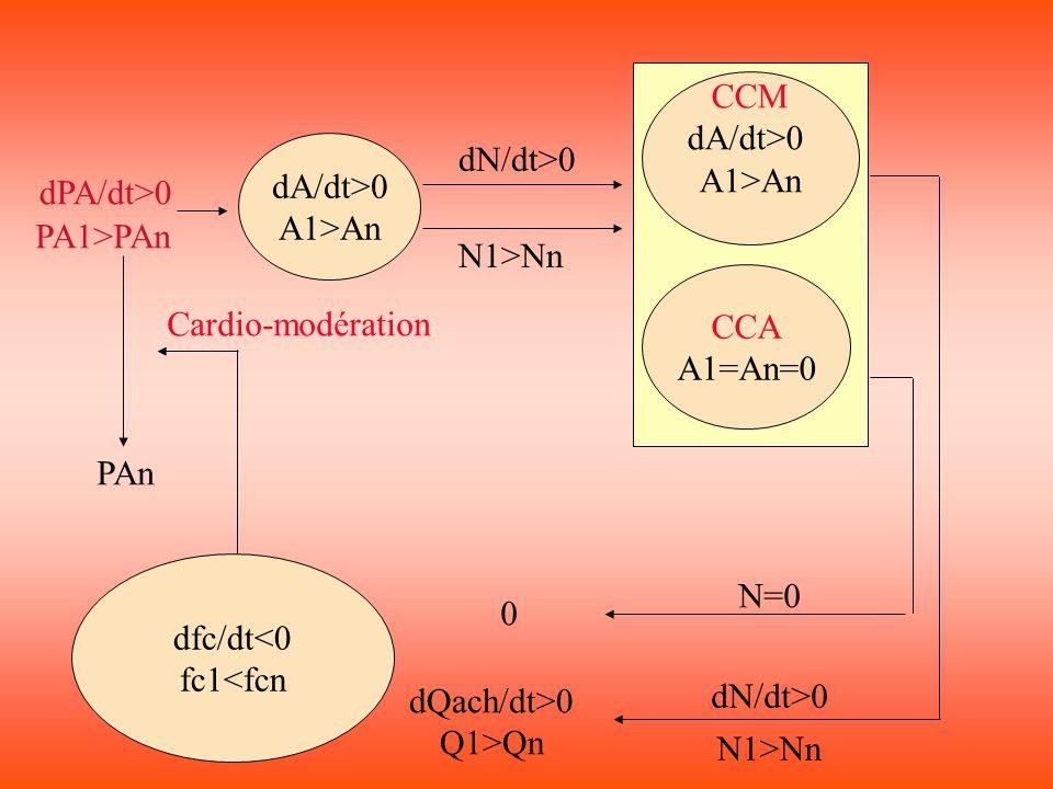 CCM dA/dt>0. A1>An. dA/dt>0. A1>An. dN/dt>0. dPA/dt>0. PA1>PAn. N1>Nn. CCA. A1=An=0. Cardio-modération.