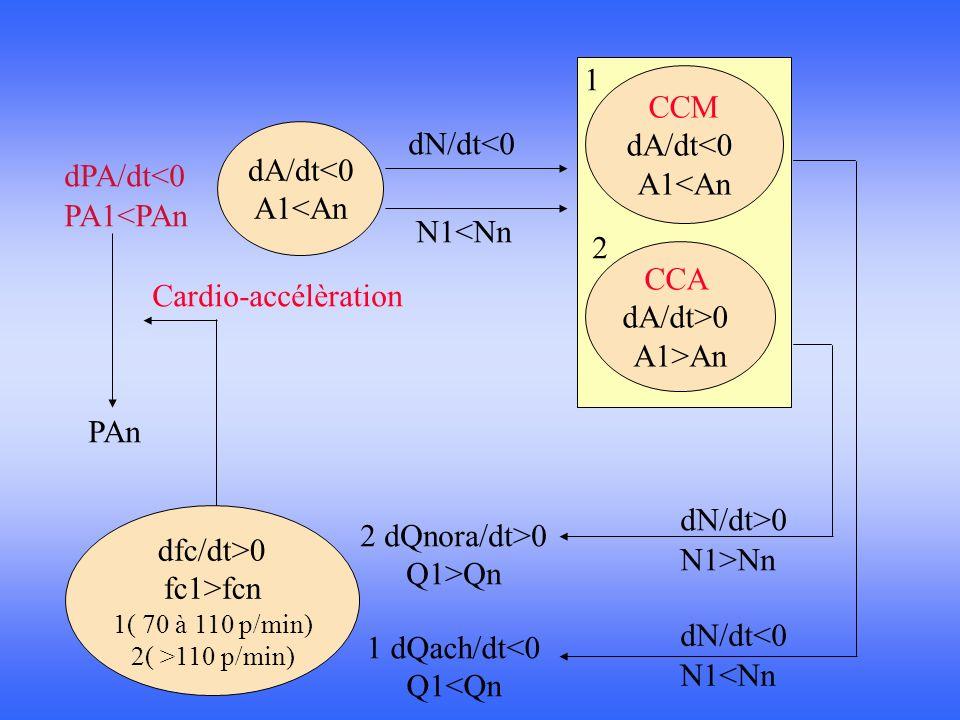 1 CCM dA/dt<0 A1<An dN/dt<0 dA/dt<0 dPA/dt<0 A1<An