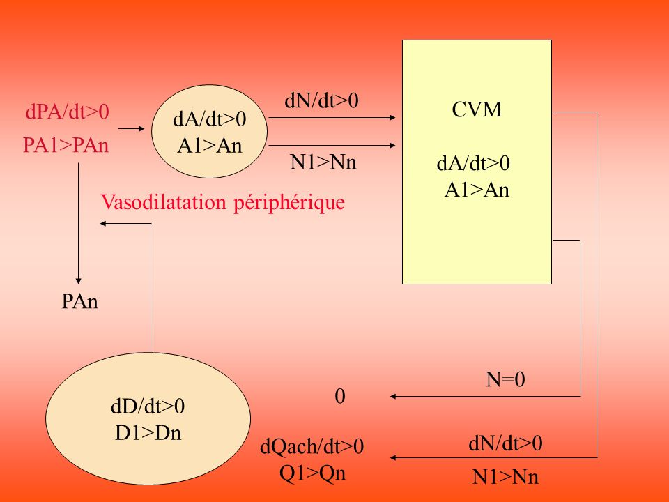 CVM dA/dt>0. A1>An. dA/dt>0. A1>An. dN/dt>0. dPA/dt>0. PA1>PAn. N1>Nn. Vasodilatation périphérique.
