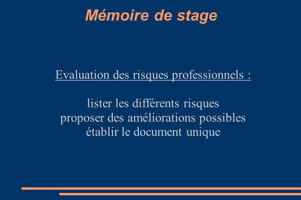 Mémoire de stage Evaluation des risques professionnels :