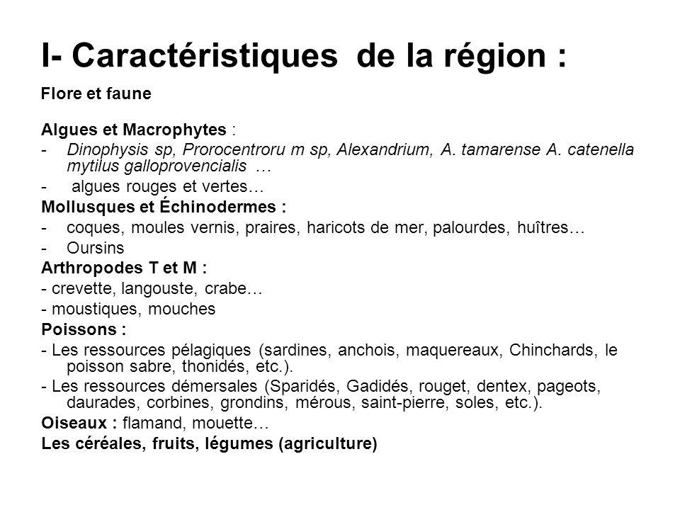 I- Caractéristiques de la région :