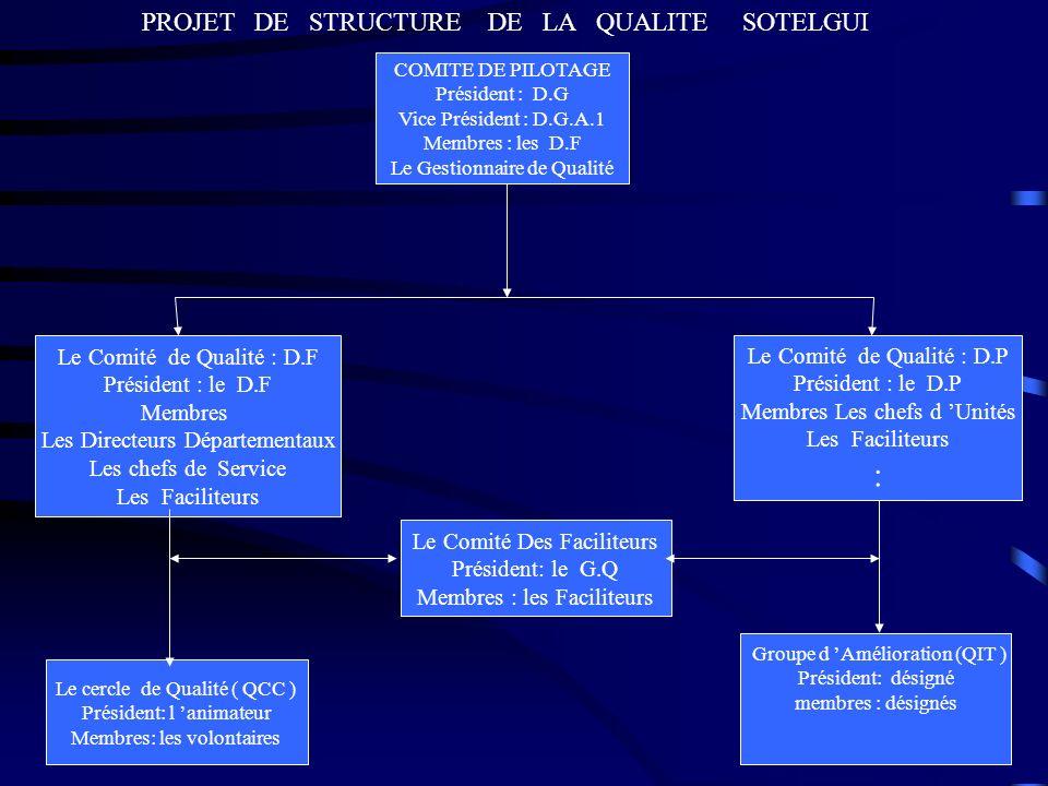 : PROJET DE STRUCTURE DE LA QUALITE SOTELGUI
