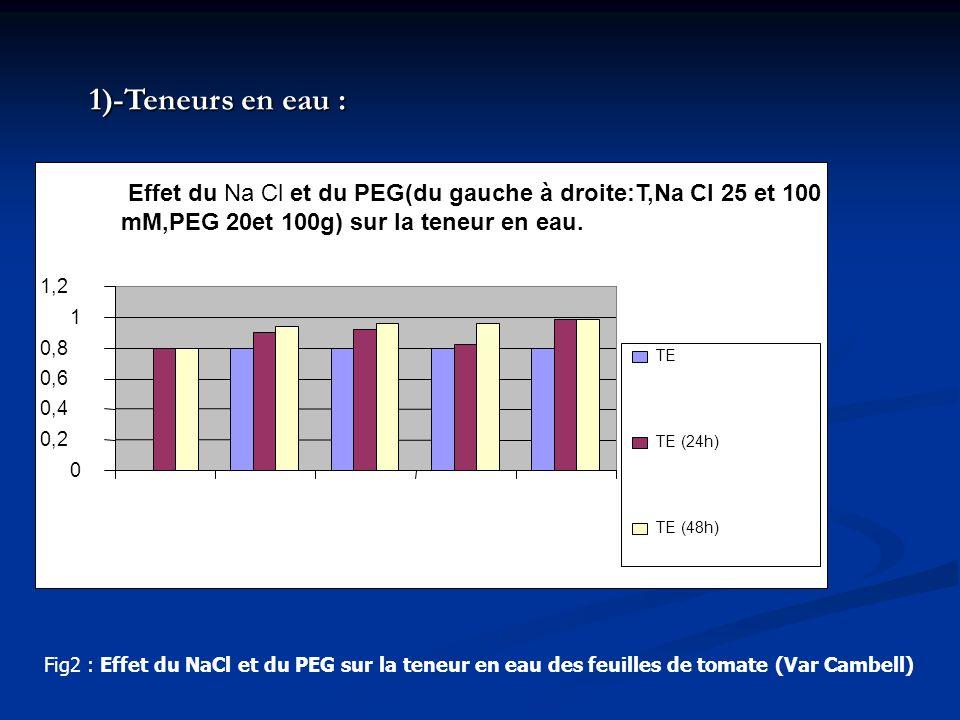 1)-Teneurs en eau : Effet du Na Cl et du PEG(du gauche à droite:T,Na Cl 25 et 100 mM,PEG 20et 100g) sur la teneur en eau.