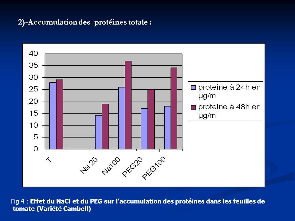 2)-Accumulation des protéines totale :
