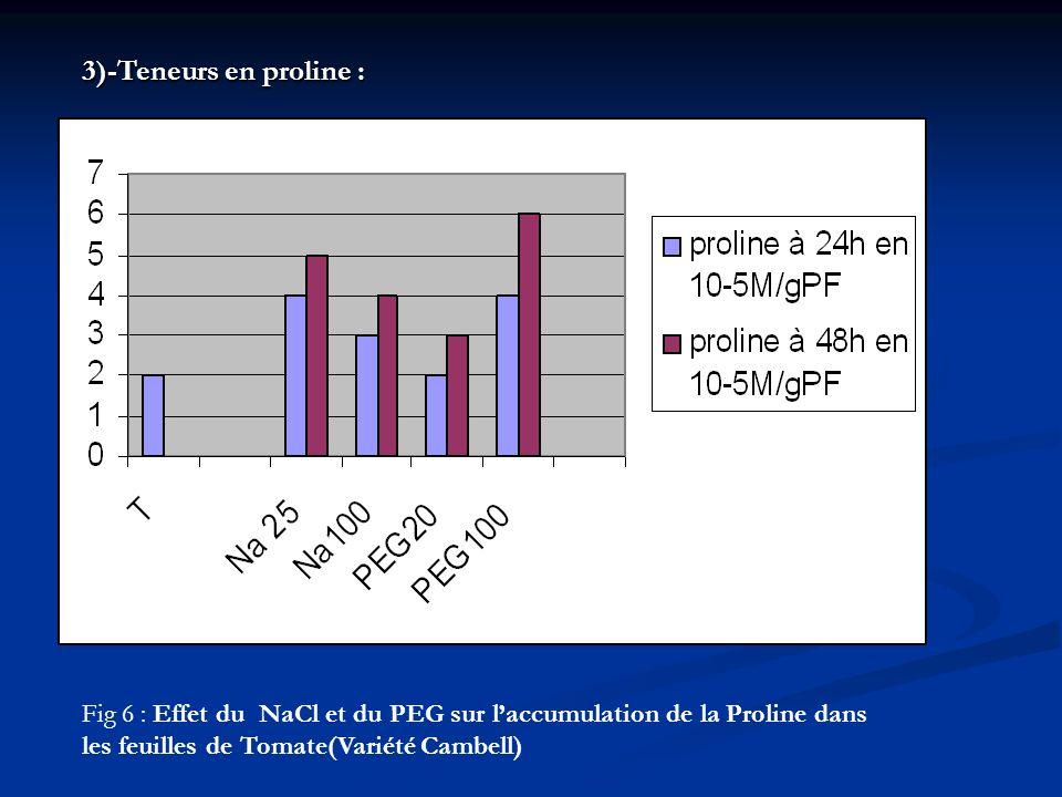 3)-Teneurs en proline : Fig 6 : Effet du NaCl et du PEG sur l'accumulation de la Proline dans.