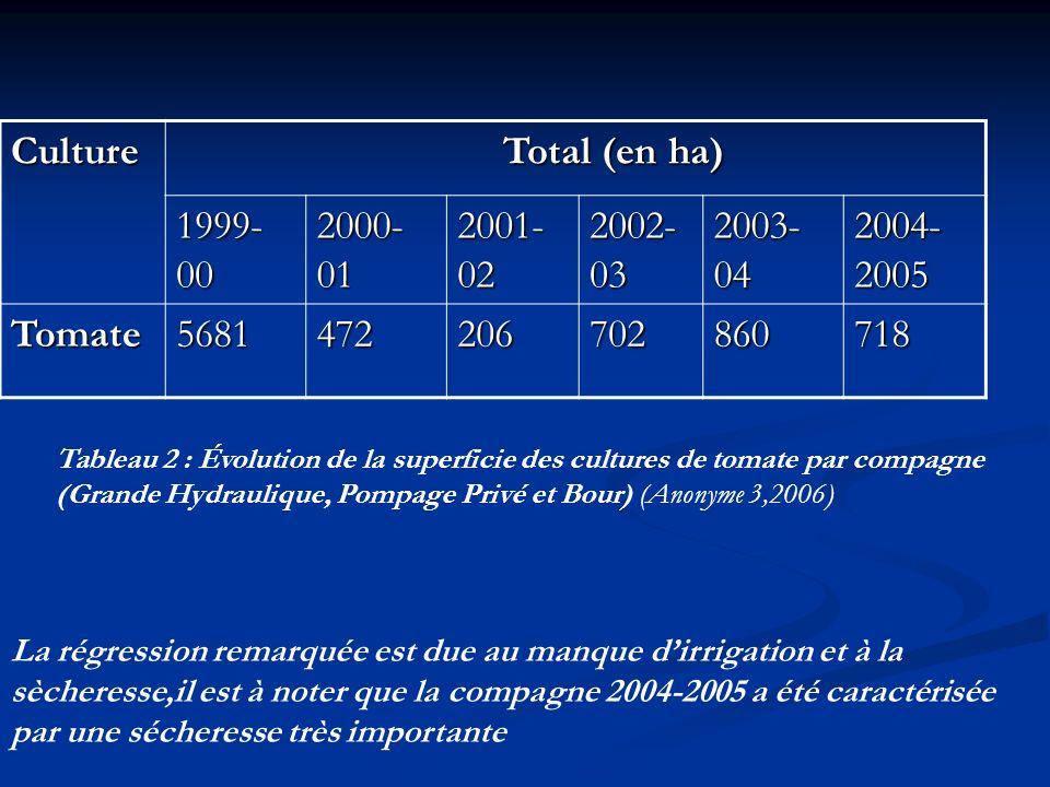 Culture Total (en ha) 1999-00 2000-01 2001-02 2002-03 2003-04