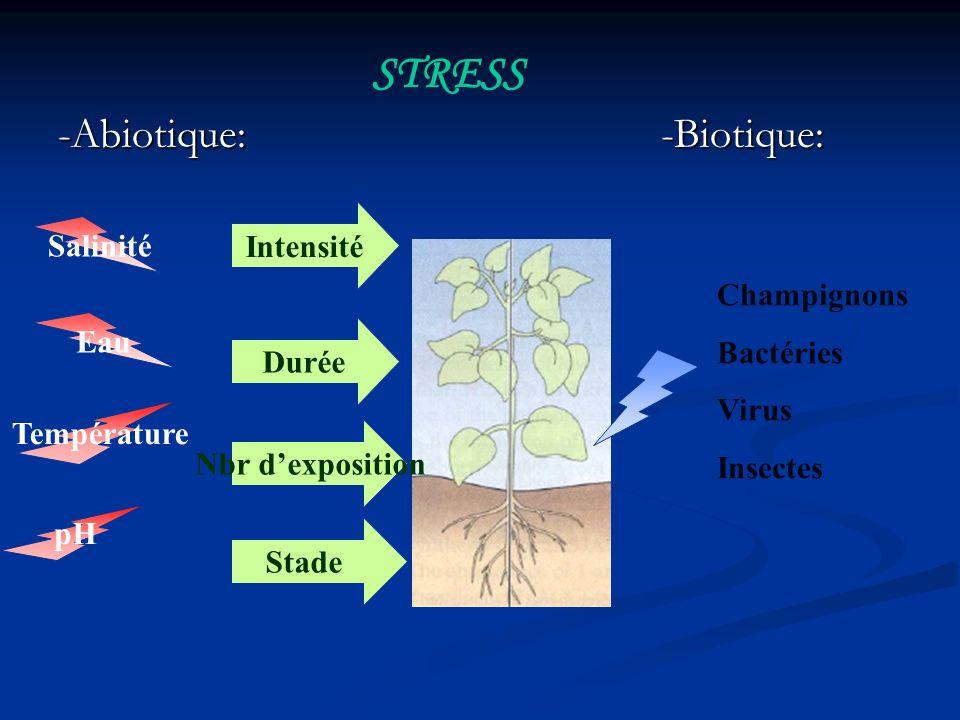 STRESS -Abiotique: -Biotique: Intensité Salinité Champignons Bactéries