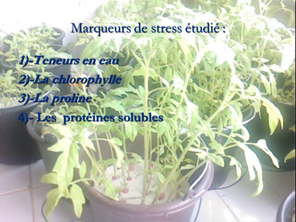 Marqueurs de stress étudié :