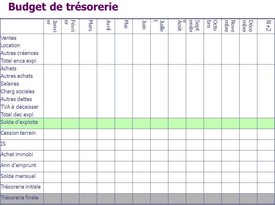 Budget de trésorerie N+2 Janvier Février Mars Avril Mai Juin Juillet
