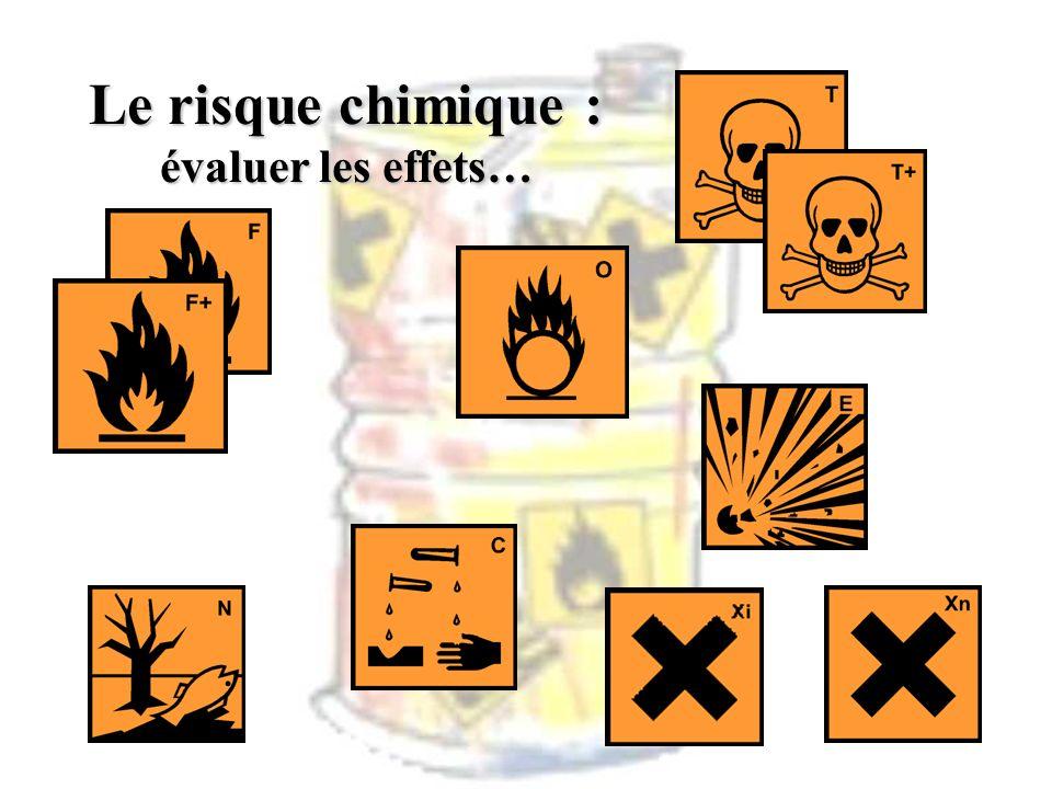 Le risque chimique : évaluer les effets…
