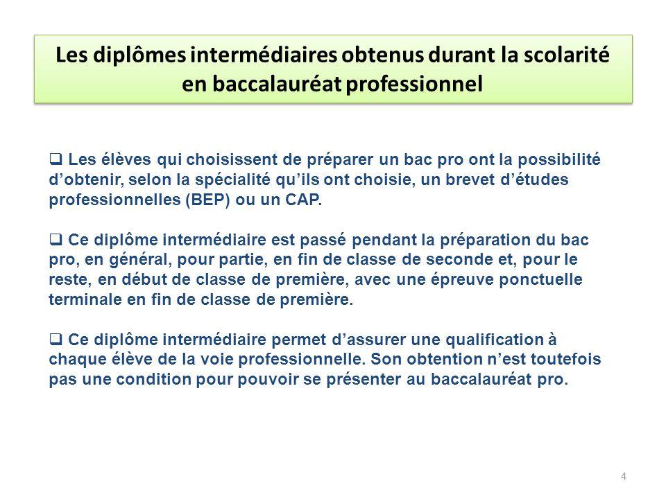 Les diplômes intermédiaires obtenus durant la scolarité