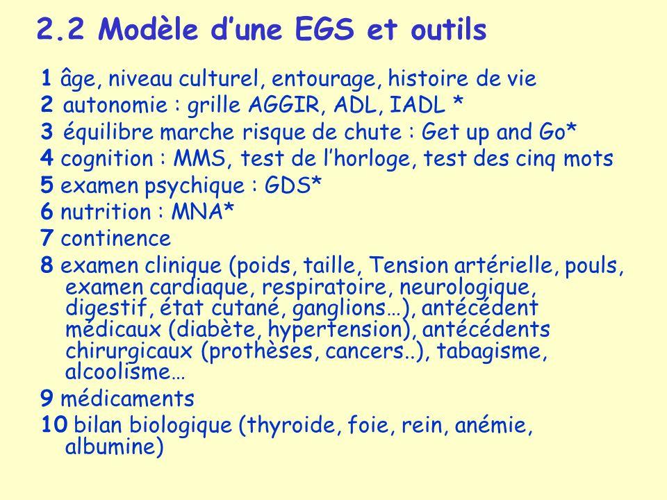 2.2 Modèle d'une EGS et outils