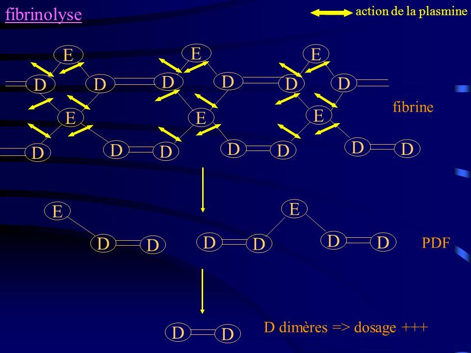 fibrinolyse E D E D D fibrine PDF D dimères => dosage +++