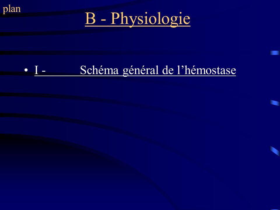 plan B - Physiologie I - Schéma général de l'hémostase