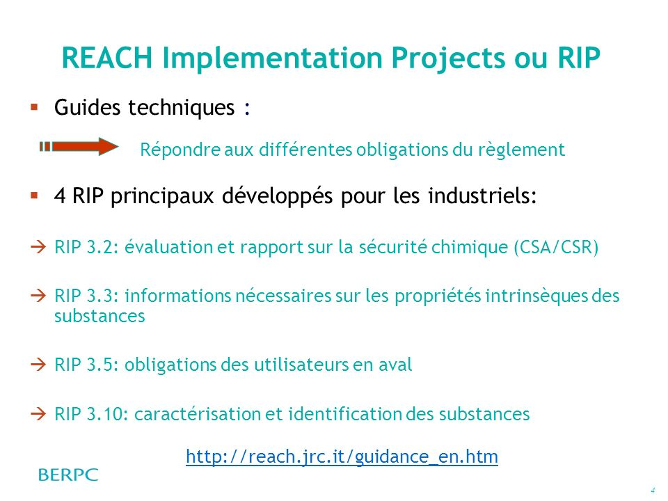 REACH Implementation Projects ou RIP