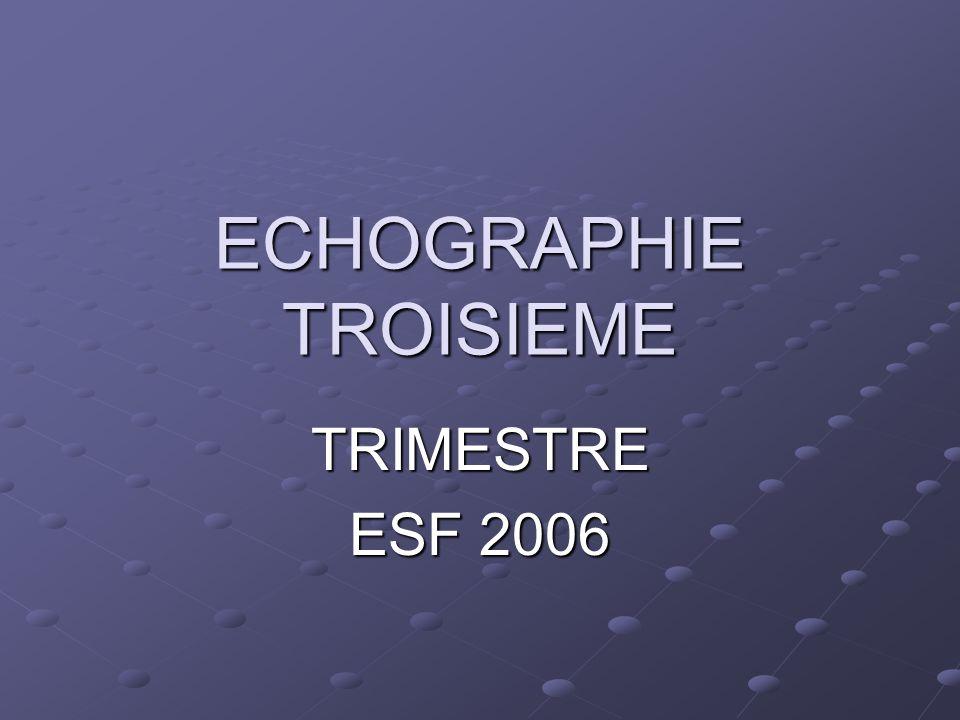 ECHOGRAPHIE TROISIEME