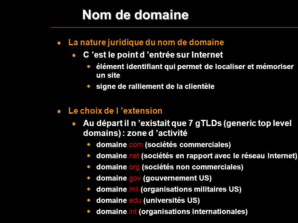 Nom de domaine La nature juridique du nom de domaine