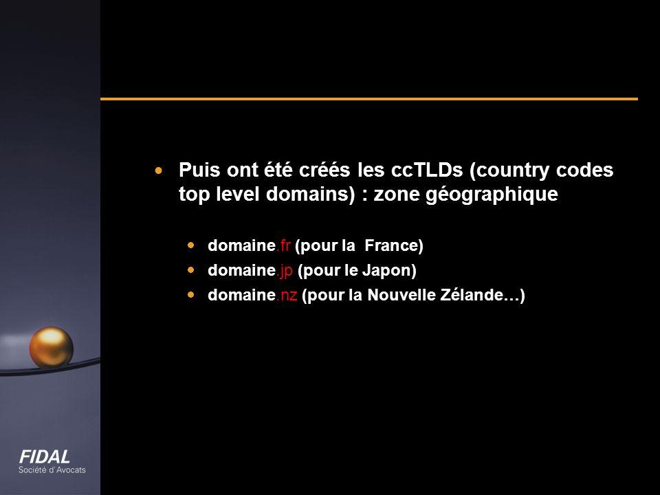 Puis ont été créés les ccTLDs (country codes top level domains) : zone géographique
