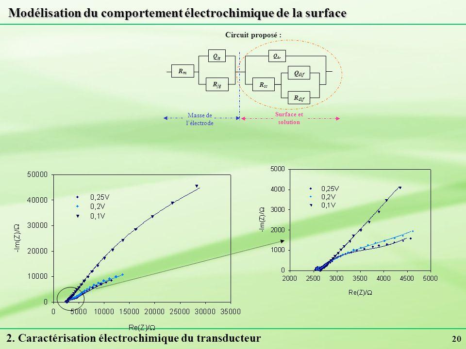 Modélisation du comportement électrochimique de la surface