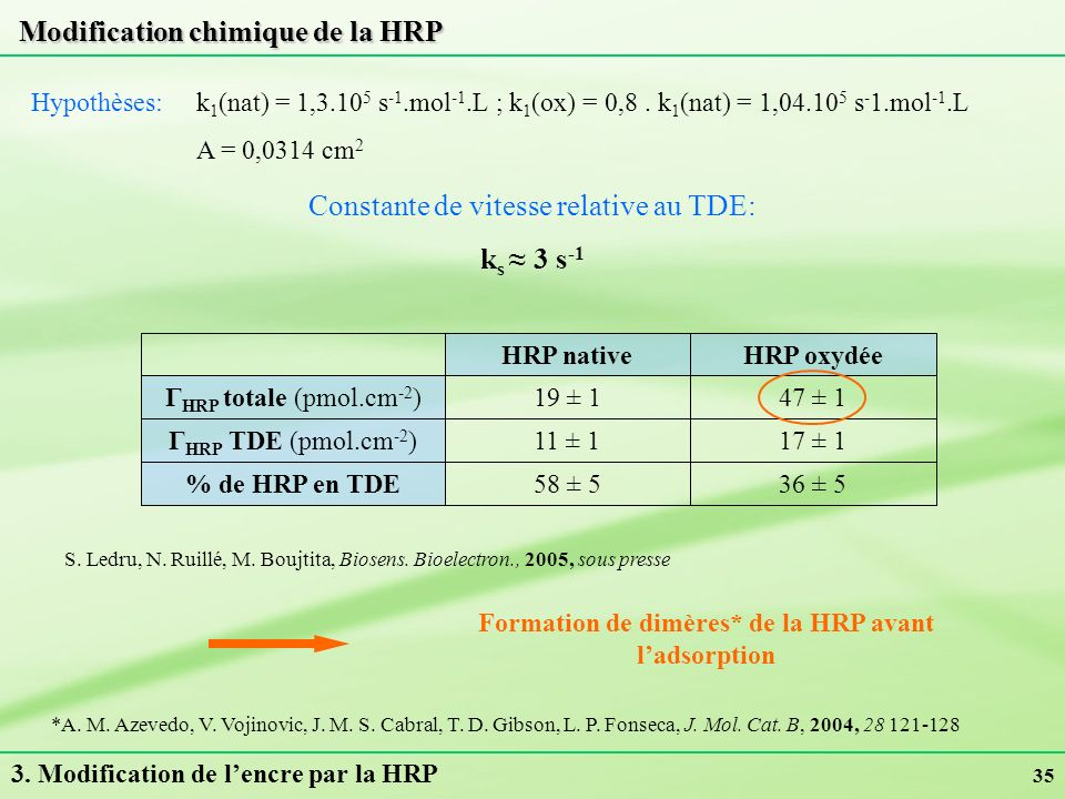 Formation de dimères* de la HRP avant l'adsorption