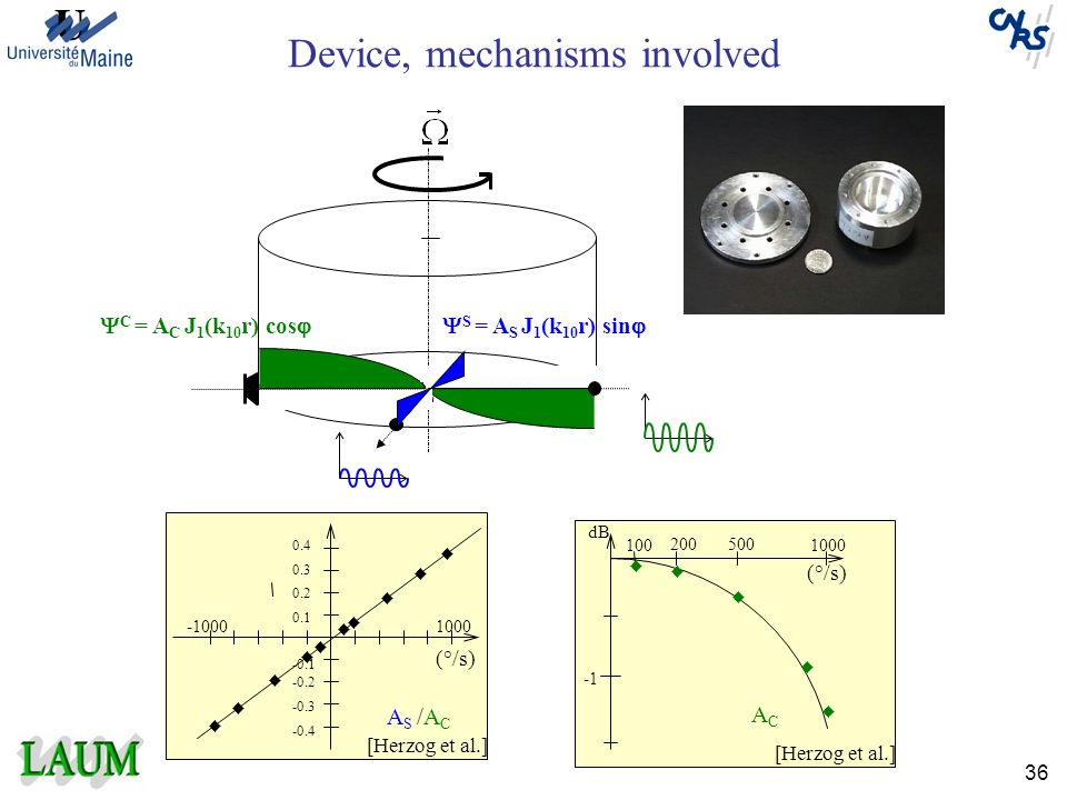 Device, mechanisms involved