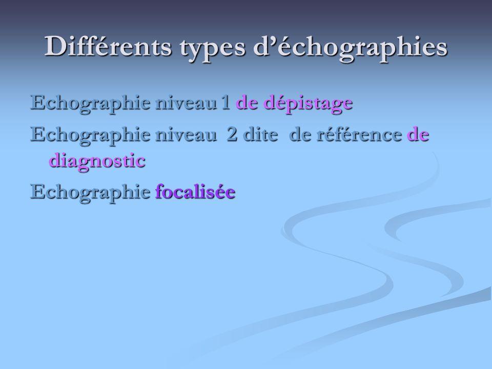 Différents types d'échographies