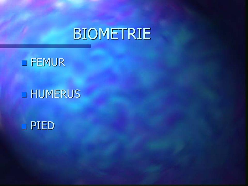 BIOMETRIE FEMUR HUMERUS PIED
