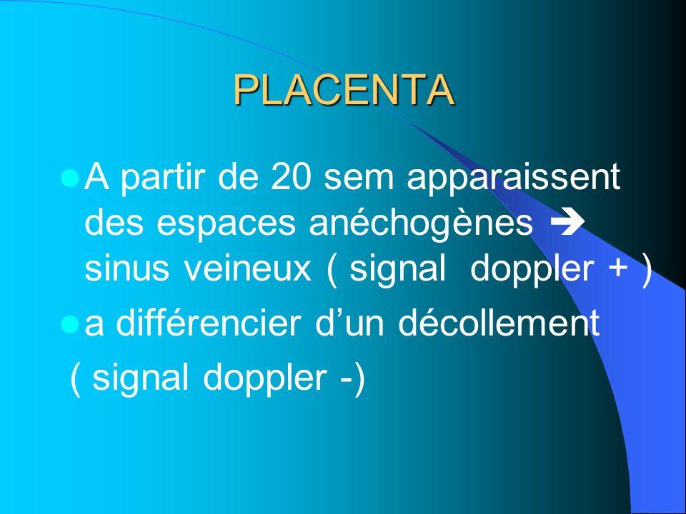 PLACENTA A partir de 20 sem apparaissent des espaces anéchogènes  sinus veineux ( signal doppler + )