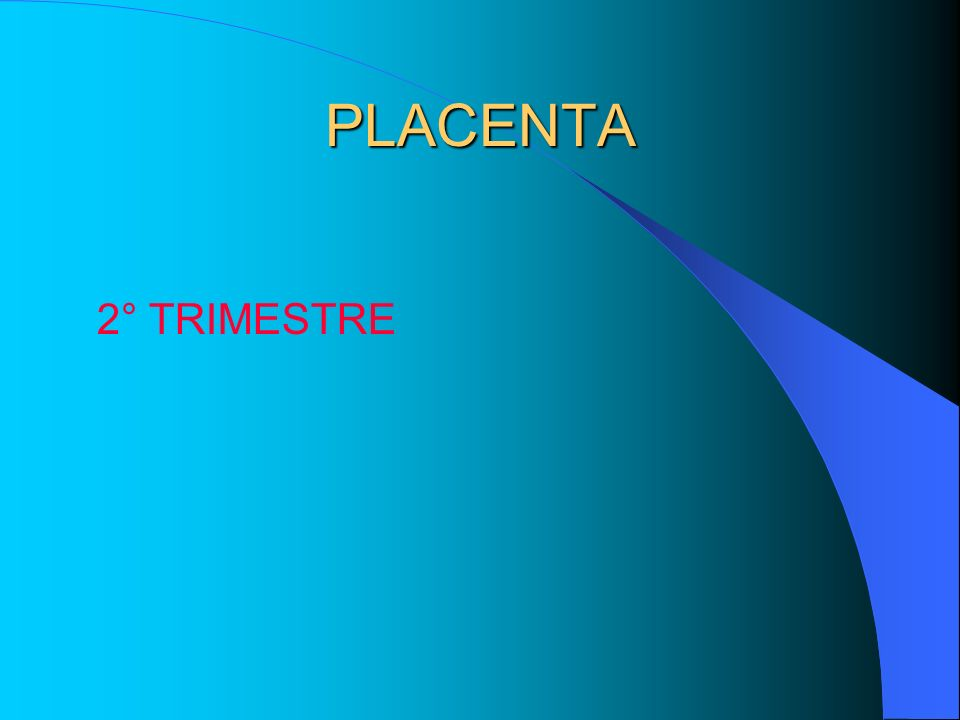 PLACENTA 2° TRIMESTRE