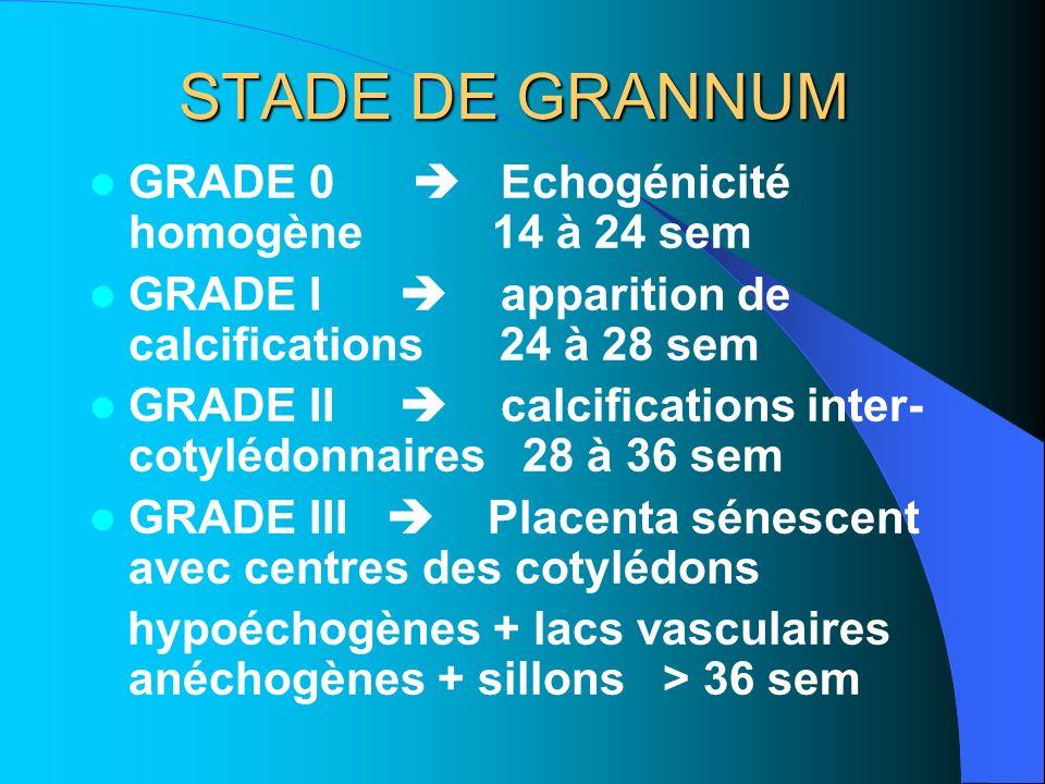 STADE DE GRANNUM GRADE 0  Echogénicité homogène 14 à 24 sem