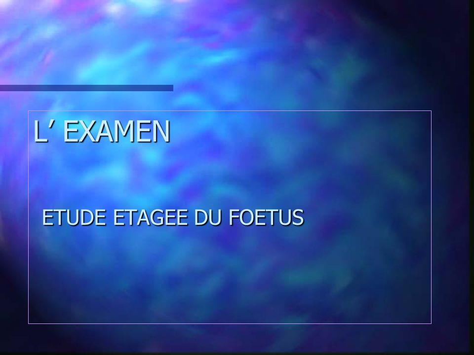 L' EXAMEN ETUDE ETAGEE DU FOETUS