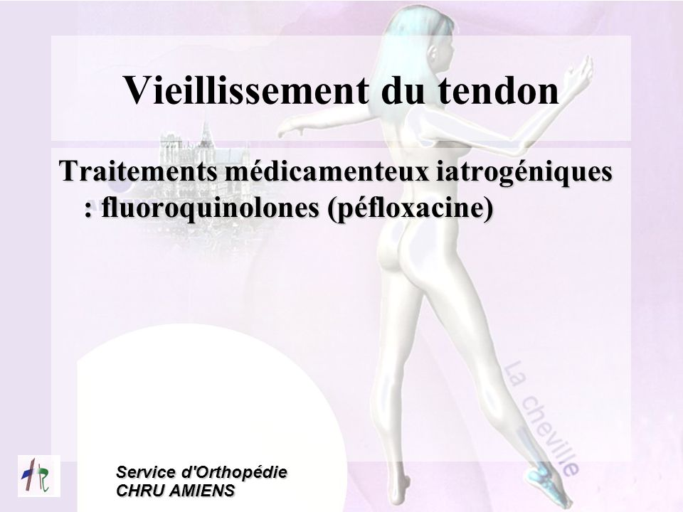 Vieillissement du tendon