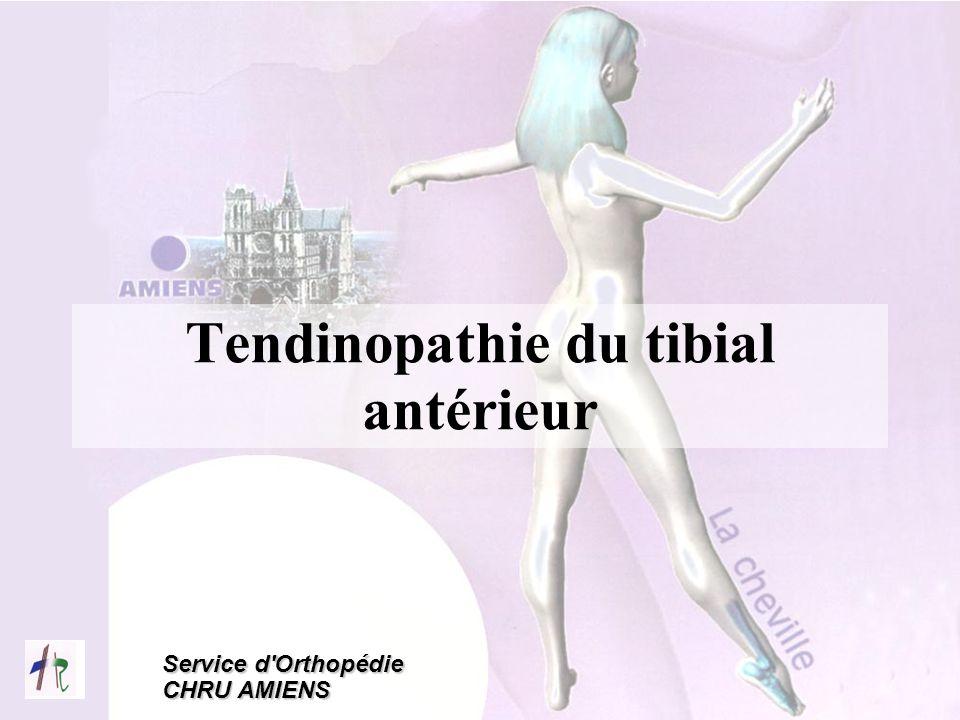 Tendinopathie du tibial antérieur