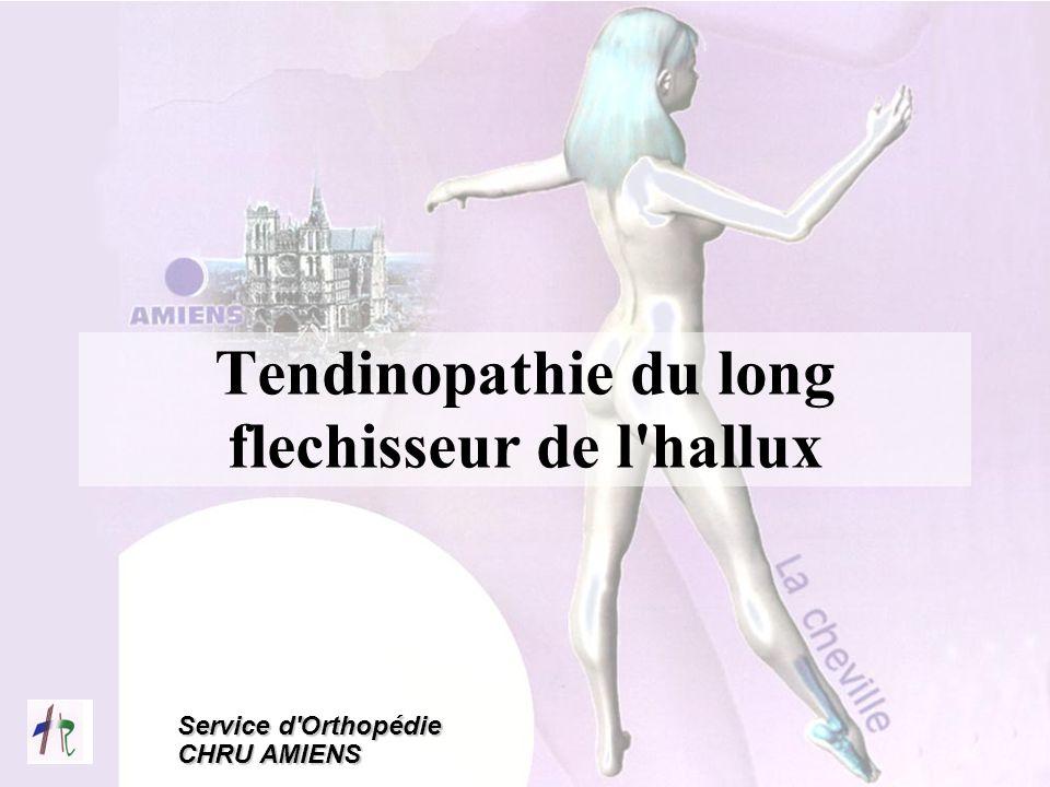 Tendinopathie du long flechisseur de l hallux