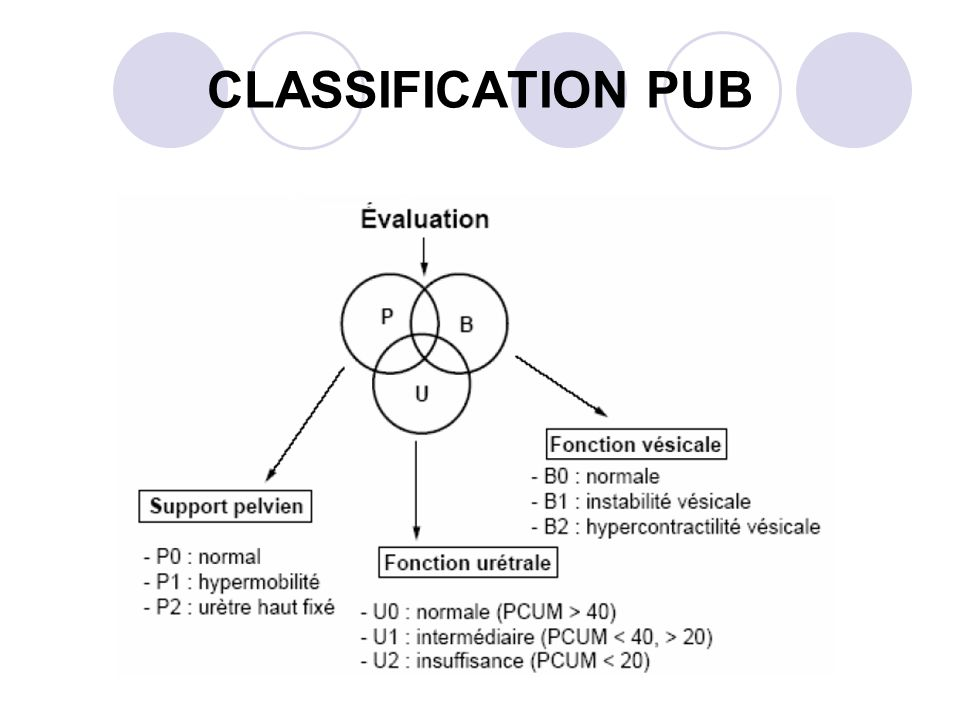 CLASSIFICATION PUB