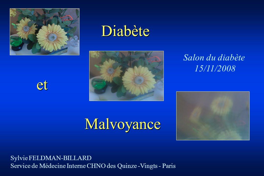 Diabète et Malvoyance Salon du diabète 15/11/2008
