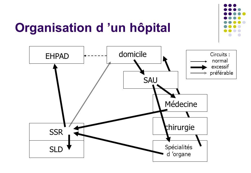 Organisation d 'un hôpital