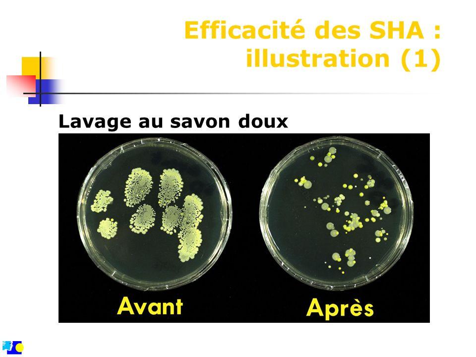 Efficacité des SHA : illustration (1)