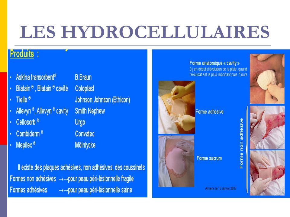 LES HYDROCELLULAIRES