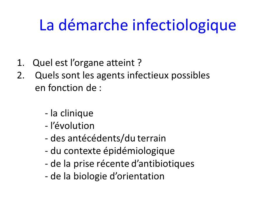 La démarche infectiologique