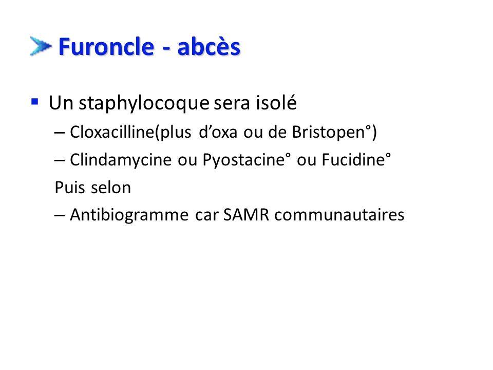 Furoncle - abcès Un staphylocoque sera isolé