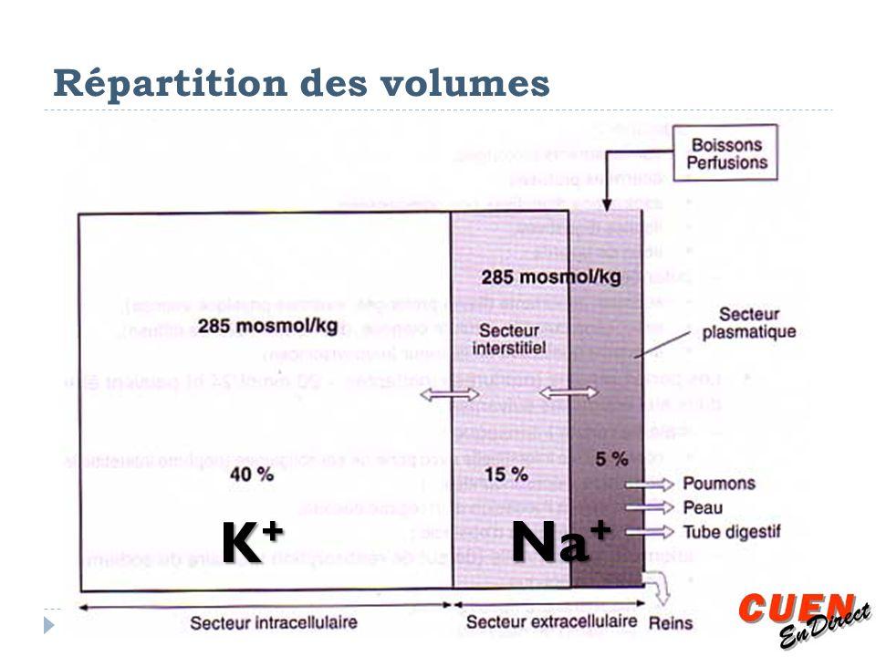 Répartition des volumes