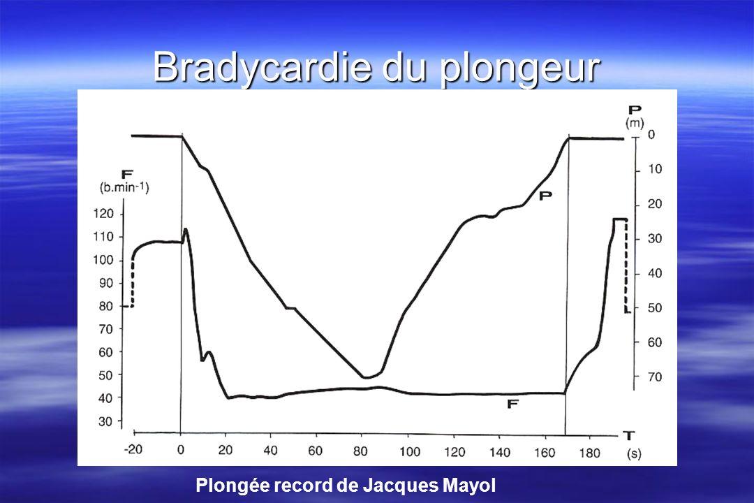 Bradycardie du plongeur