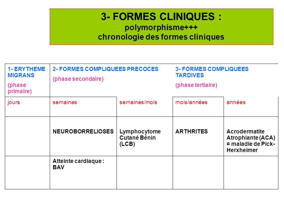 3- FORMES CLINIQUES : polymorphisme+++ chronologie des formes cliniques