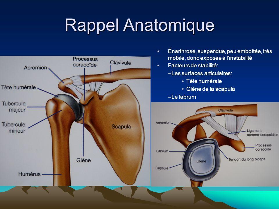 Rappel Anatomique Énarthrose, suspendue, peu emboîtée, très mobile, donc exposée à l'instabilité. Facteurs de stabilité: