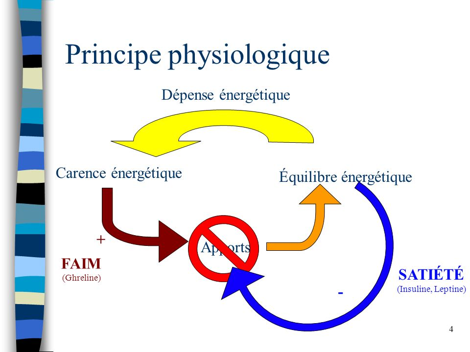 Principe physiologique