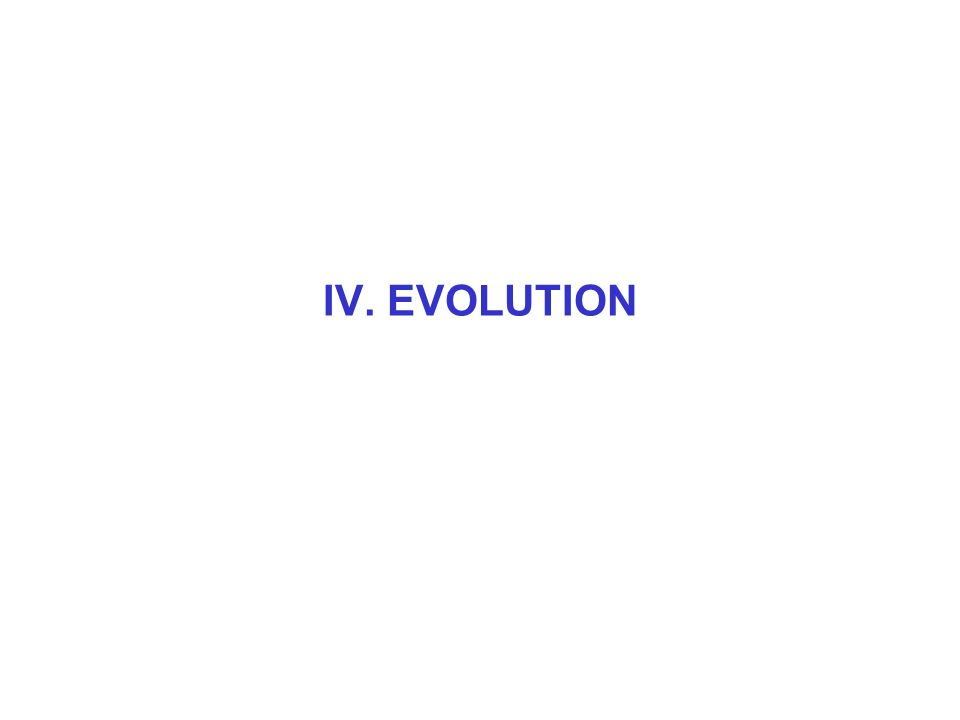 IV. EVOLUTION